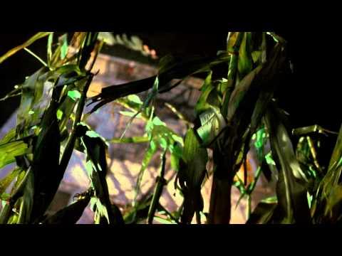 Los niños del maíz: Revelación -Tráiler (Doblada)