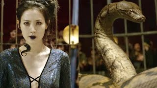 Download Video How Nagini Can Be a Human in Fantastic Beasts 2 MP3 3GP MP4
