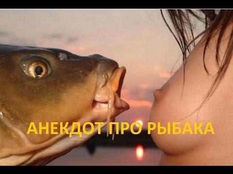 Анекдоты / Свежие анекдоты