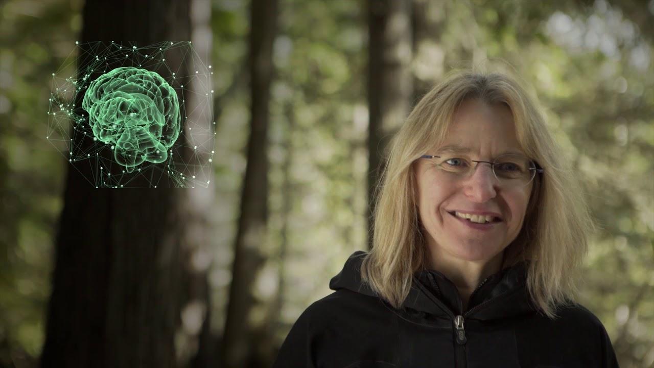 Intelligent Trees Documentary