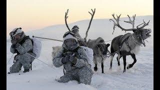 Северный полюс наш. Экономика Арктики.