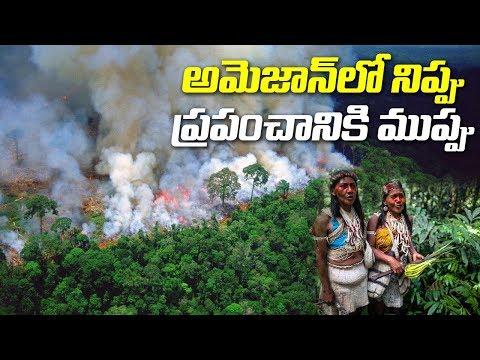 Amazon Rainforest is Burning at an Unprecedented Rate  | ABN Telugu