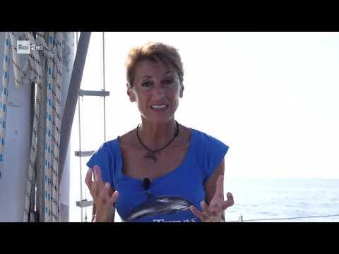 Ricerca del capodoglio - Inquinamento acustico in mare
