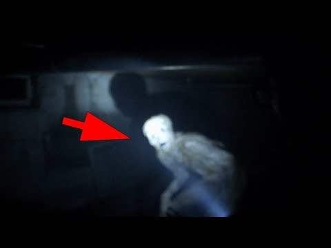 5 Mysterious Creatures Caught On Camera in a Tunnel