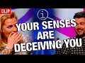 QI | Your Senses Are Deceiving You