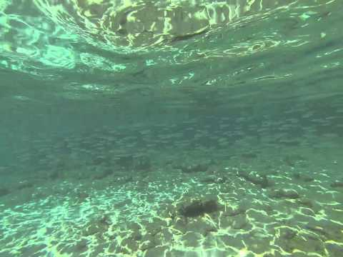 GoPro - Caribbean sea in Curacao, the Netherlands Antilles