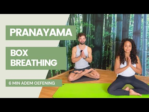 6 min ademoefening Box Breathing | Amsterdam Yoga Collective