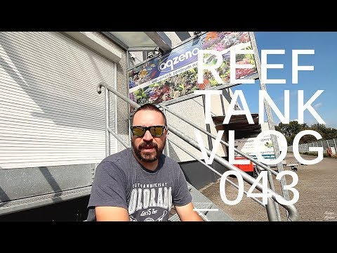 VISITING AQUARISTIK ZENTRUM NORD AQZENO | REEF TANK VLOG_043