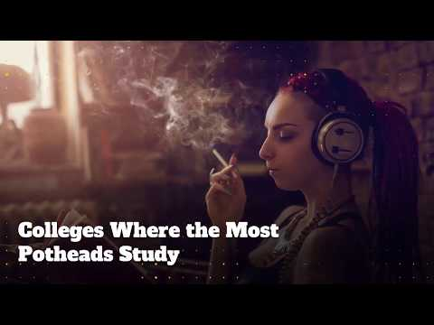 UCLA & University of Colorado Are Now Top Schools for Educated Potheads (2017)