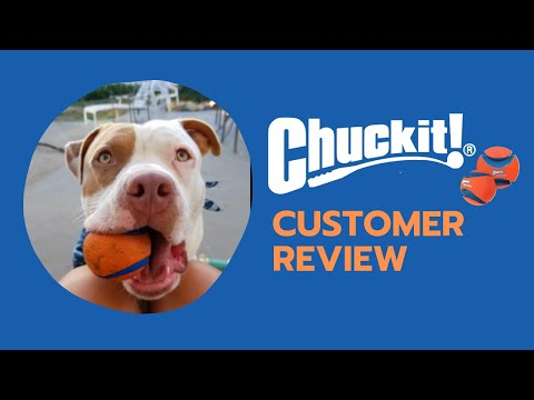 Customer Review| Chuck it! Ultra Ball Best Gifts for Dogs