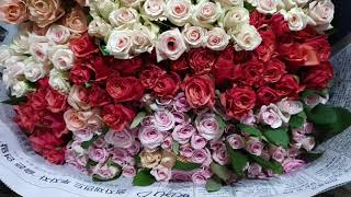 [인터넷꽃도매시장]장미도매 전국꽃집 꽃도매 꽃쇼핑몰 생…