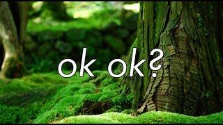 ok ok? - half•alive (lyric video)