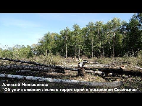 """Алексей Меньшиков: """"Об уничтожении лесных территорий в поселении Сосенское"""""""