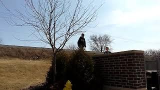 My biggest ollie?