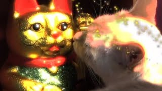 Maneki Neko 招き猫 Fortune Cat - Furball Fables