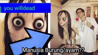 Malam Horror Rusuh Momo Challenge#1!!!!!!!!