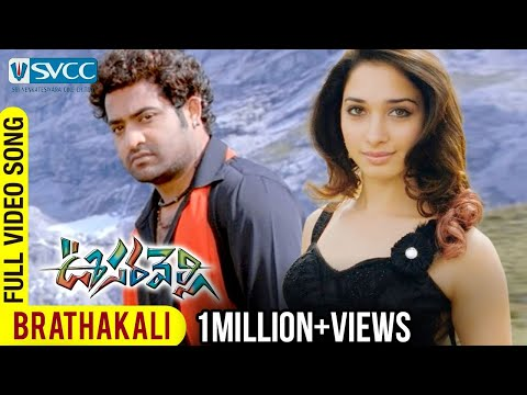 Oosaravelli Movie | Brathakali Video Song | Jr NTR | Tamannaah | DSP | Surender Reddy