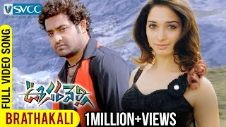 Oosaravelli Movie | Brathakali Video Song | Jr NTR | Tamannaah | Surender Reddy | DSP