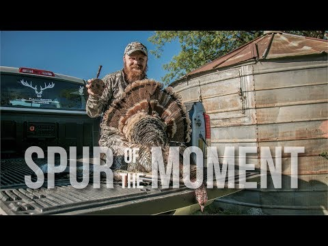 PERFECT OKLAHOMA TURKEY HUNT | Spur Of The Moment