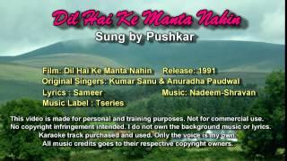 Dil Hai Ke Manta Nahin - Pushkar