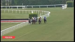 Vidéo de la course PMU PRIX DE PUYCHARIC