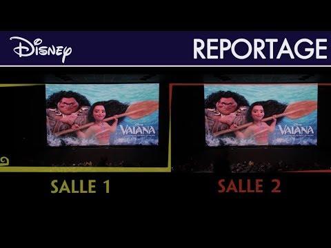 Vaiana, la légende du bout du monde - Reportage : Course interactive en réalité augmentée !