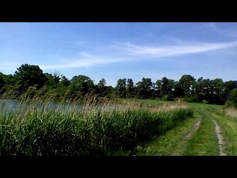 LG Optimus L9 II Front Camera - Video Sample