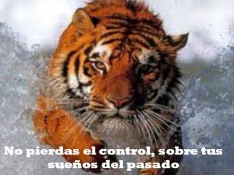 Eye Of The Tiger (El Ojo del Tigre) Subtitulado al español