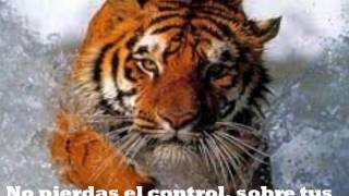 Eye Of The Tiger (El Ojo del Tigre) Subtitulado al español