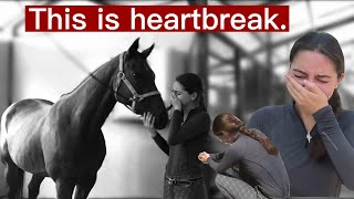 Saying Goodbye to my Heart Horse (Holly)…