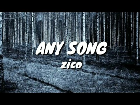 zico---any-song-(-lyrics-)