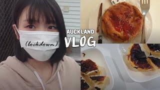 vlog | 뉴질랜드 락다운 이민생활 (락다운 첫 주/…