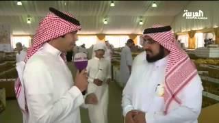 العربية تبث مباشرة من داخل مهرجان التمور في #بريدة