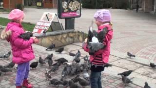 Кормление голубей(, 2015-03-31T15:11:12.000Z)