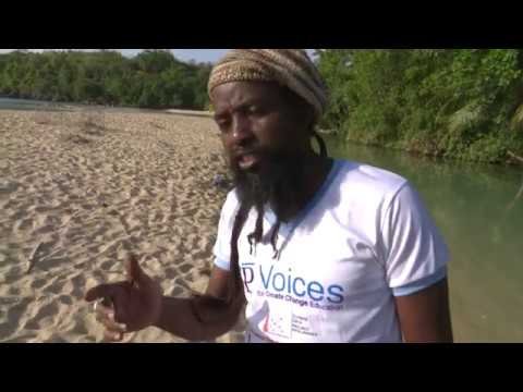 Reefs & Pollution: a Voices for Climate Change Education PSA