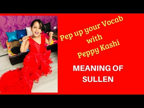 Funny Video 2018 | Funniest way to pep up your vocab | Meaning of Sullen