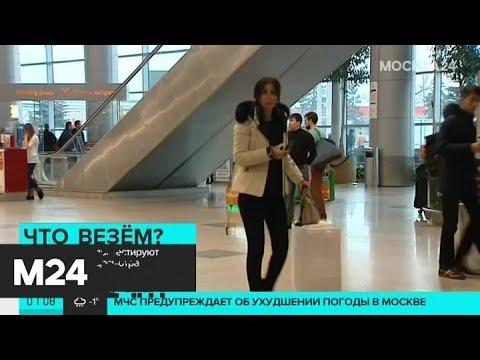 В Домодедово протестируют новую систему досмотра - Москва 24