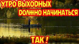 Приколы на рыбалке 2021//Я ржал до слёз на рыбалке//НЕОБЫЧНЫЕ СЛУЧАИ НА РЫБАЛКЕ//ВЕСЁЛАЯ РЫБАЛКА//