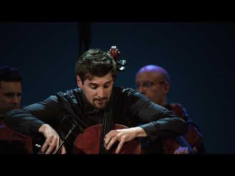 Luka Sulic - Vivaldi Winter (1st Movement) (Live In Trieste)