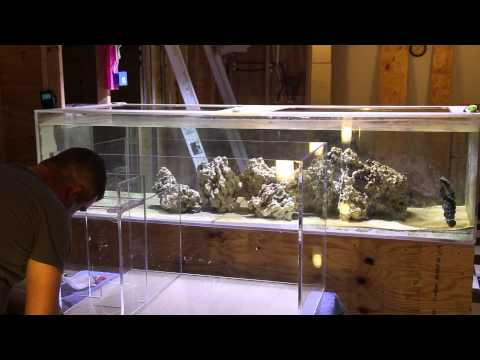 Acrylic Tank Construction Part 3