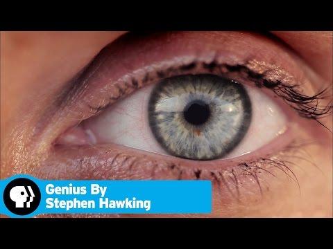 GENIUS BY STEPHEN HAWKING | What Are We? | PBS