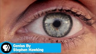 GENIUS BY STEPHEN HAWKING | What Are We? | PBS