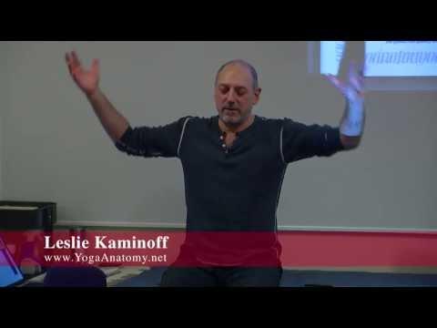 """Am I a Fan of Yoga Booty Ballet? Absolutely"" Leslie Kaminoff [YogaAnatomy.net]"
