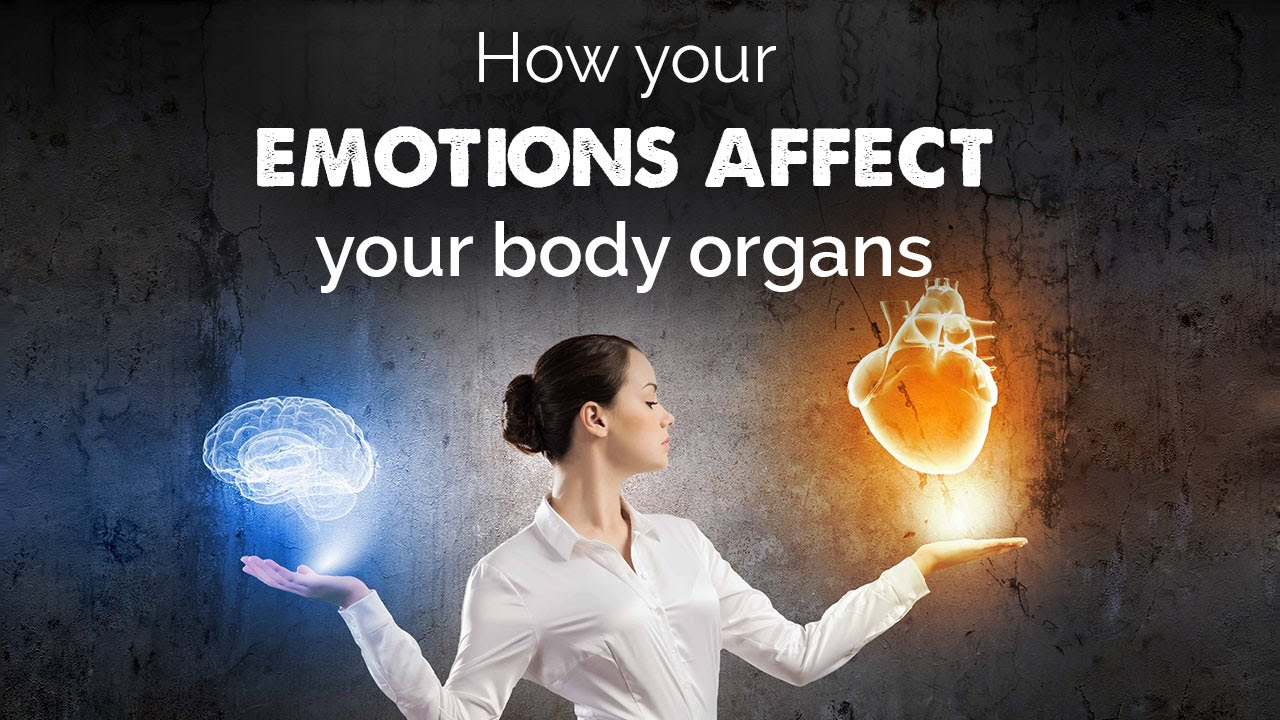 How your emotions affect your body organs - YouTube