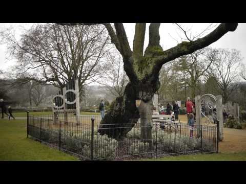 Horniman Museum and Gardens: Our visitors' voices