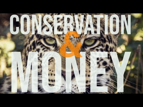 A way to fund conservation?