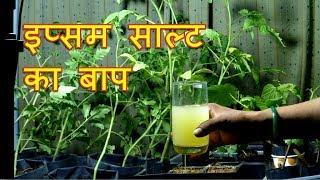 Epsom Salt Ka Baap - Micronutrients
