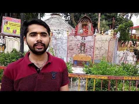 Narayani Ashram Allahabad   Travel Vlog #1