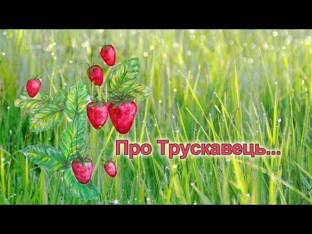 Інтерв'ю Іванни Кічун з  Іриною Бердаль-Шевчик.