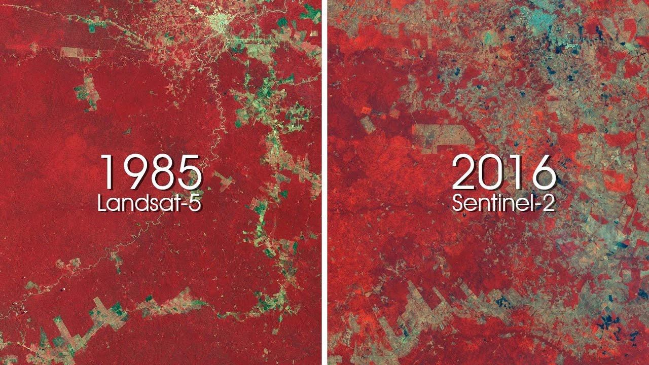 ESA shows 30 years of deforestation in Amazon rainforest - YouTube